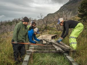 5. Rangers and volunteers repairing old boardwalk near Campamento Italiano.Credit Project Eudaimonia