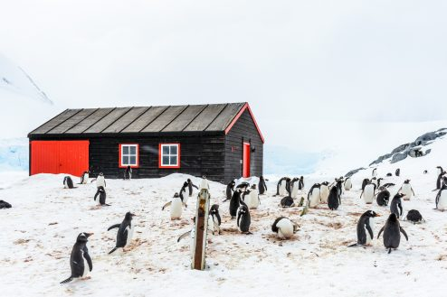 Penguin Post Office
